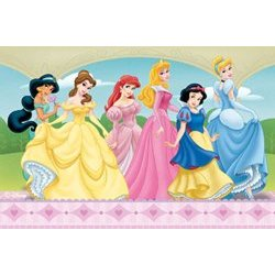 Disney Princess Rug Home Decor